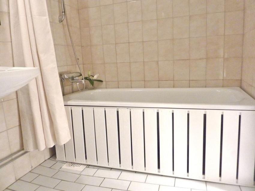 Экран под ванну: выбор дизайна, подбор размеров, обзор лучших моделей и нюансы применения (130 фото и видео)